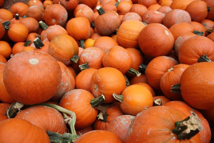 Happy National PumpkinDay!