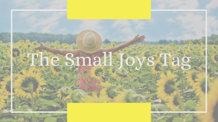 The Small JoysTag